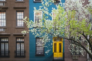 Why You Should Go to New York City This Spring