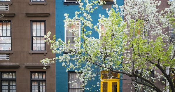 6 Things to Do in New York City This Spring