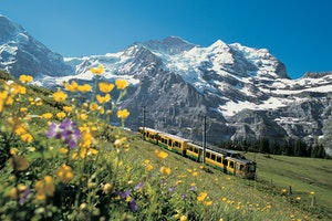 The Most Epic Way to See Switzerland Is by Train