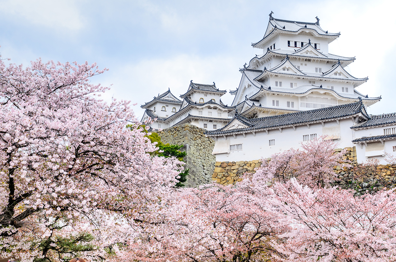 What to Know About 2020 Cherry Blossom Season in Japan