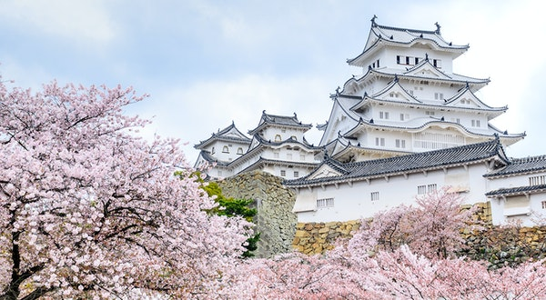 What To Know About 2020 Cherry Blossom Season In Japan,Wall Stickers For Bedroom Amazon