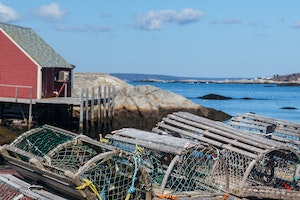 6 Classic and Quirky Foods From Nova Scotia