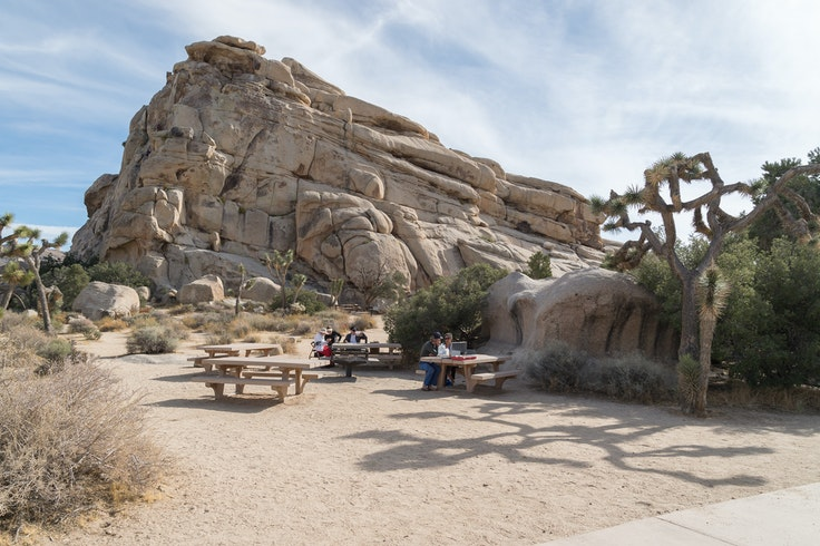 While national parks, including Joshua Tree, technically stay open during government shutdowns, most services are suspended and many facilities close.