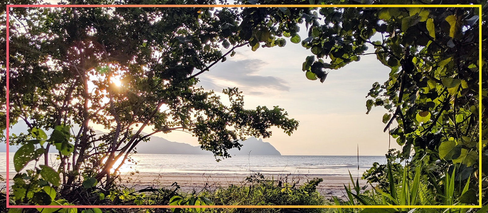 Borneo boasts beautiful islands and thriving cities, but most travelers are drawn here for its jungles and rare animals.