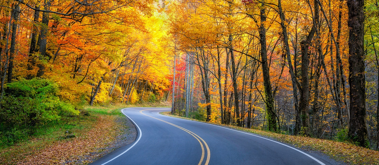Smoky Mountains Fall Colors Best Time 2020 This Fall Foliage Prediction Map Will Tell You When to Expect Peak