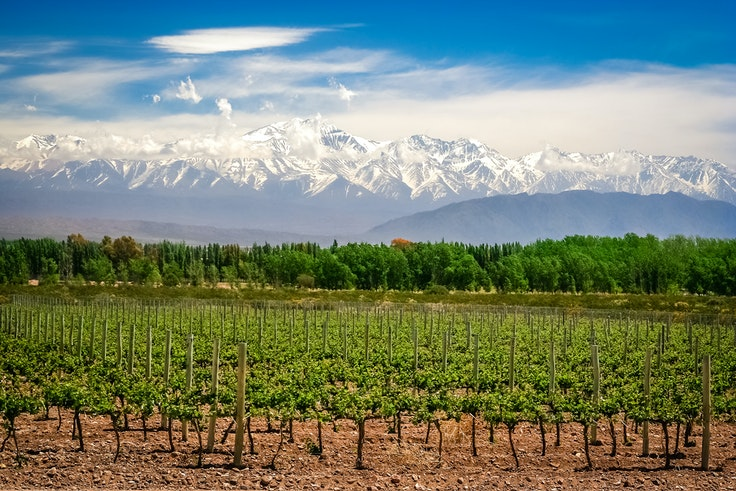 Argentina's Mendoza Valley had two wineries place in the top five of the first-ever World's Best Vineyards rankings.