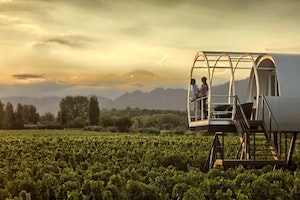 Wining and Dining in the Land of Malbec