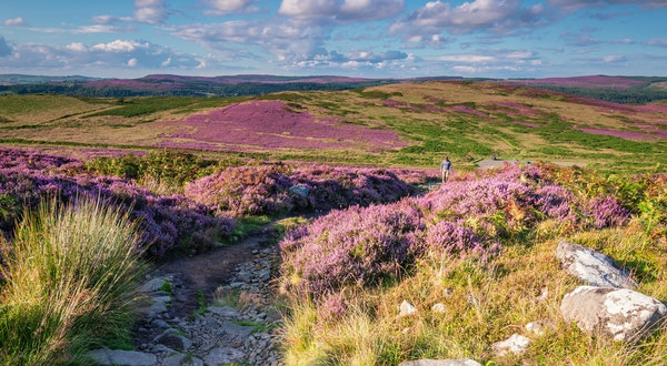 How to Find and Protect Public Hiking Trails in England