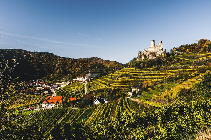 In Austria's winegrowing regions near Vienna, winetasting can be enjoyed from spring through fall.