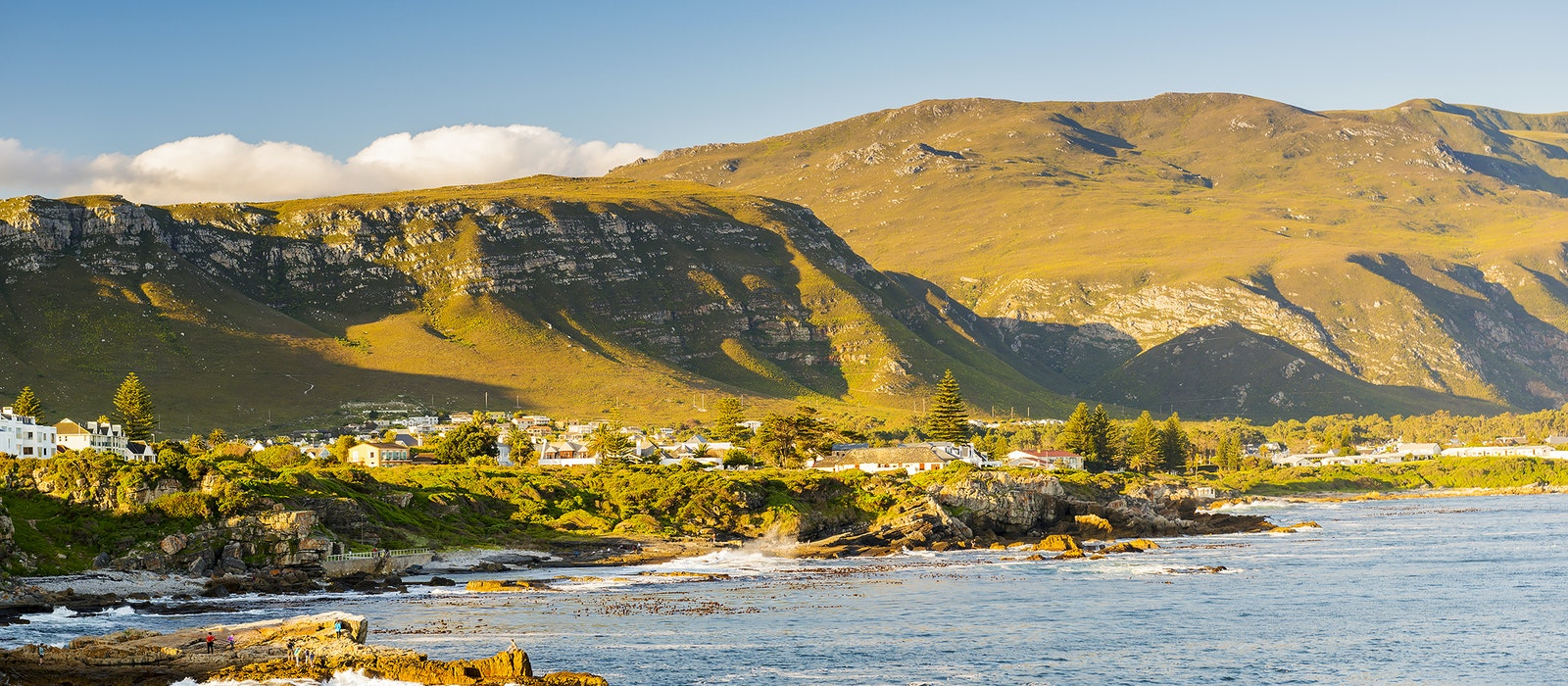 The town of Hermanus is a prime whale-watching spot.