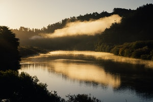 The Best Way to Experience the Dreaminess of West Sonoma County