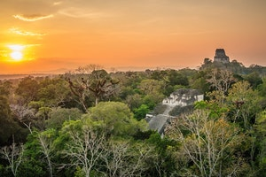 Tikal Rediscovered: The Greatest Mayan City Just Got a Lot Grander
