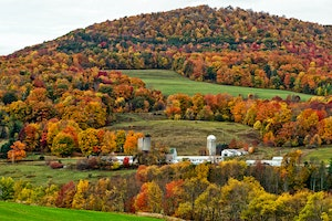 Fall Foliage in the Northeast Will Be Spectacular This Year, Experts Say