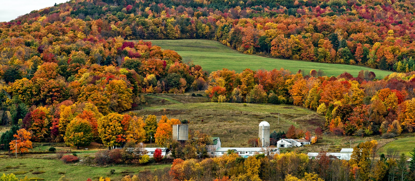 Fall colors across New York and New England are expected to be good this year, but the southern parts of the region will get the most vibrant foliage.