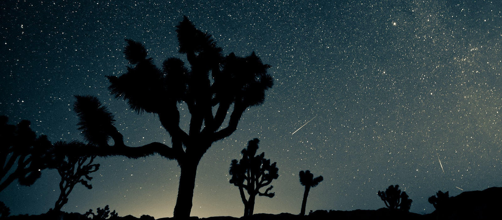 The skies should be clear in Joshua Tree National Park this weekend for viewing the Perseids.