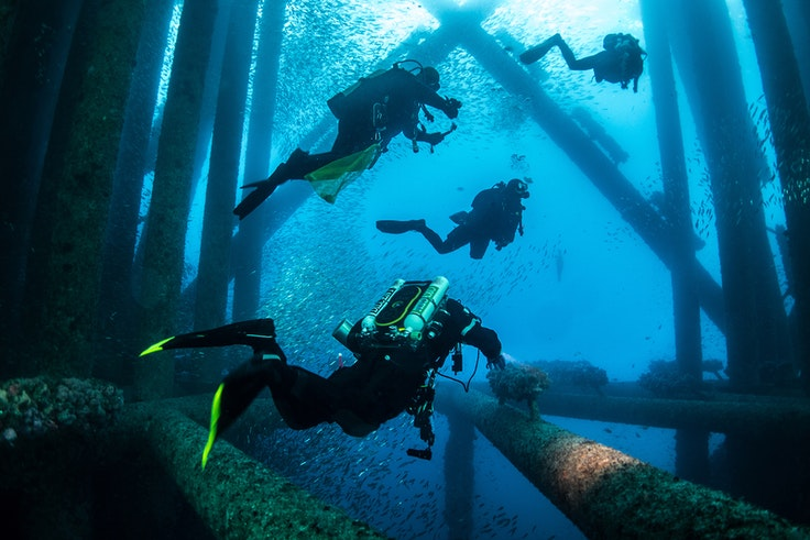 For divers, oil rigs are veritable playgrounds.