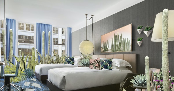 Are House Plants the New Must-Have Hotel Room Amenity?