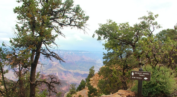 The Grand Canyon for Beginners