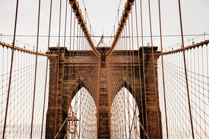 You've Walked Over the Brooklyn Bridge...Now What?