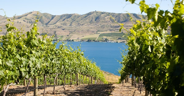 A Guide to Washington State Wine Country