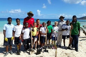 This Arbor Day, You Can Help Bring Green Back to the British Virgin Islands