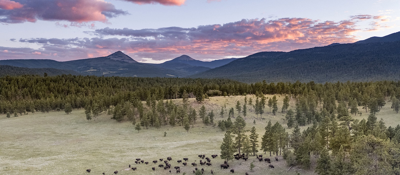 The privately owned Ted Turner Reserves is one of many properties that offer travelers exclusive experiences while also helping to alleviate some of the stresses of overtourism.