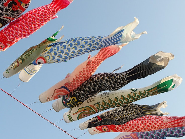 You know it's May when the sky is full of koinobori.