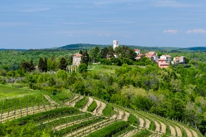 What a Food Writer Learned Feasting Farm-to-Table in Istria