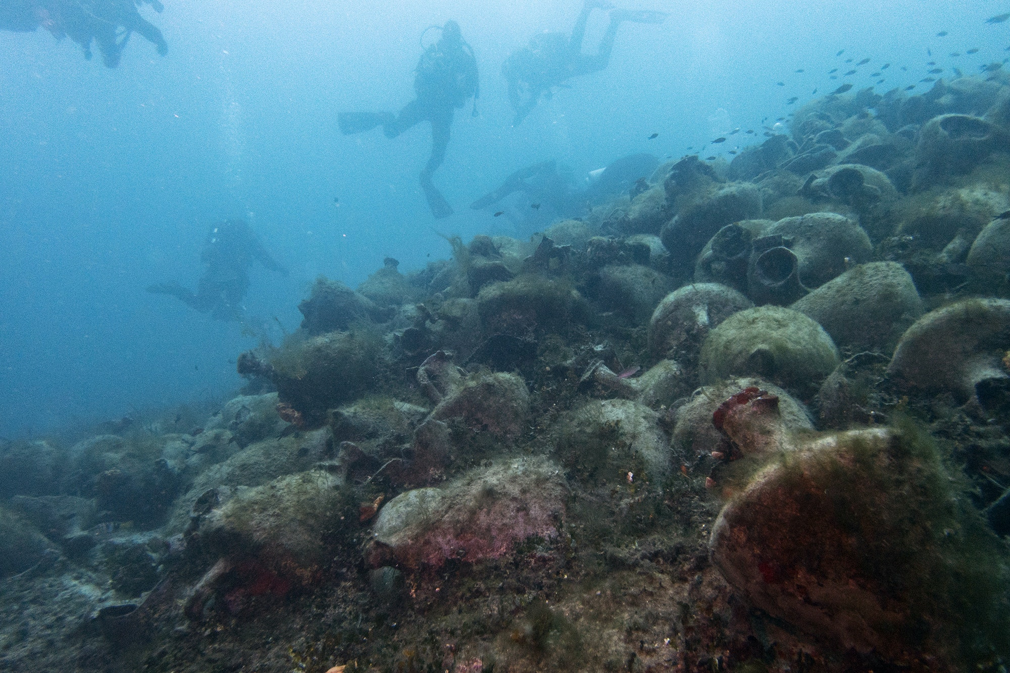 Long Off-Limits, Ancient Greek Shipwreck Opens to Divers as Underwater Museum