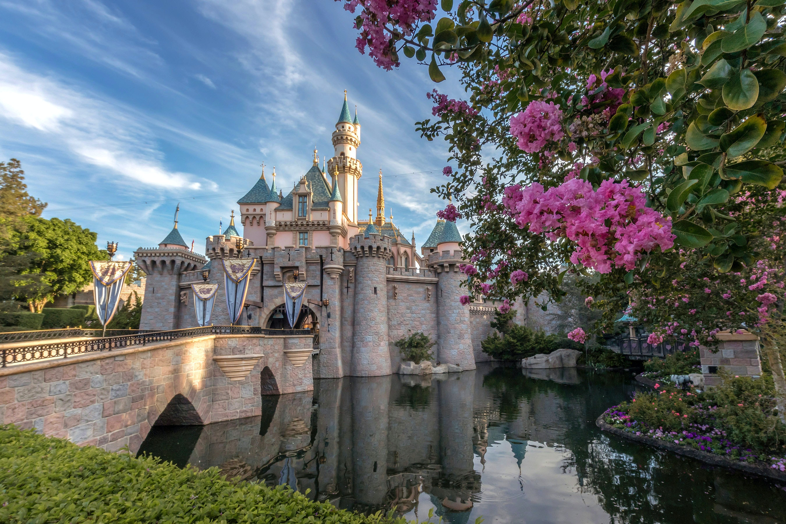 The Grown-Ups' Guide to Disneyland