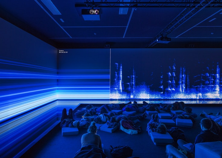 """""""The Great Animal Orchestra"""" by Bernie Kraus and United Visual Artists, as seen at the Fondation Cartier in Paris."""