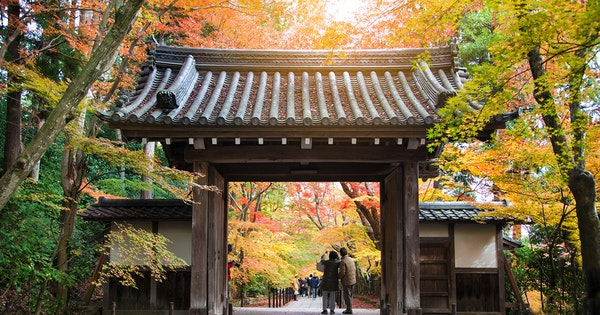 What to Do in Kyoto in Fall 2019