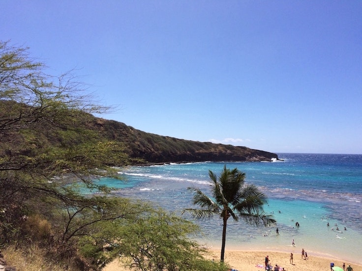 We could spend the entire stopover at Hanauma Bay.