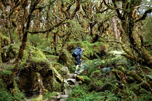 Boy Meets World: Two Unlikely Hikers Tackle a Classic New Zealand Trek