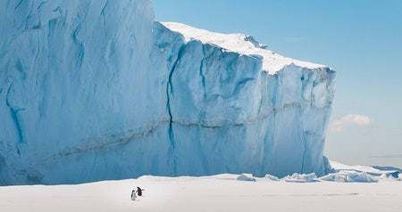 My 3 Trips to Antarctica Were Inspired by 1 Incredible Book