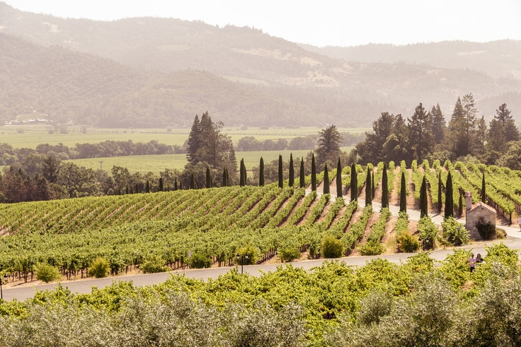 Napa Valley is much more than scenic vineyards—and there are plenty of interesting ways to explore the area.