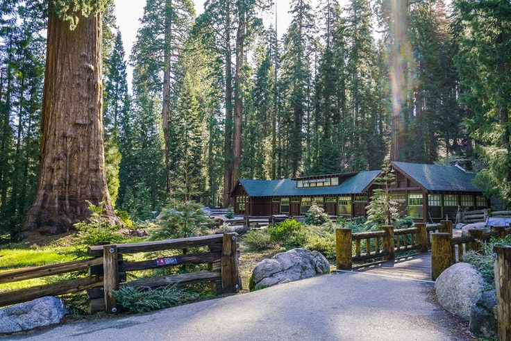 The planned cell tower would bring service to the Giant Forest Museum and other popular areas of Sequoia National Park.