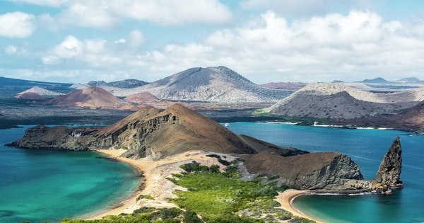 What I Learned from the Fearless Creatures of the Galápagos Islands