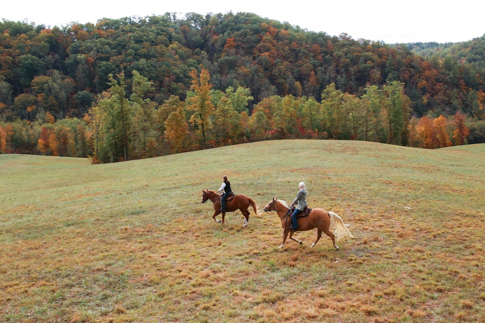 What to Expect from Blackberry Farm's Dreamy New Project in the Great Smoky Mountains