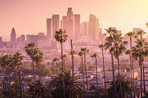 Why You Should Go to Los Angeles This Winter