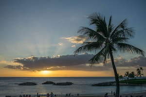 How to Feel Good and Do Good on Your Next Hawaiian Vacation