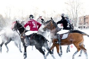 Snow Polo: The Glitziest Sport You've Never Heard Of