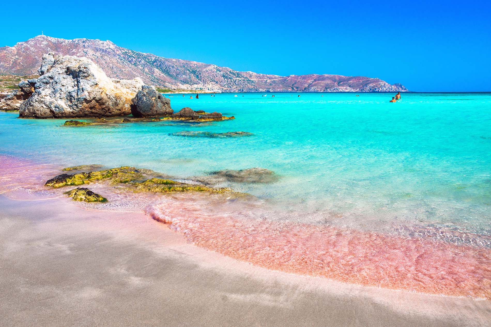 The Best Pink Sand Beaches Around World
