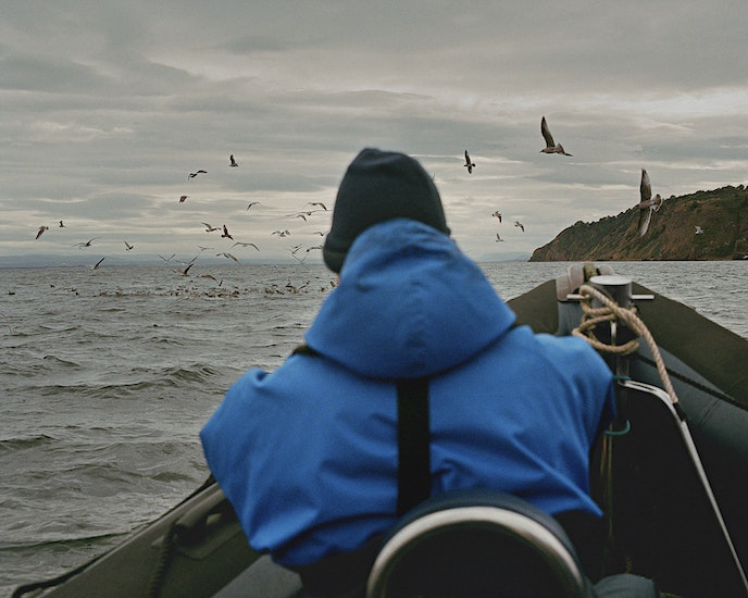 A boat tour offers an alternative perspective on the coast's rugged cliffs.