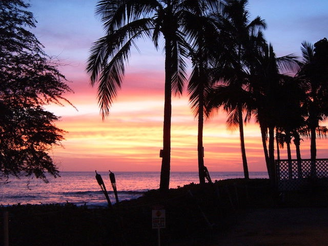 Wade's first trip to the Hawaiian islands inspired a lifetime of travel.