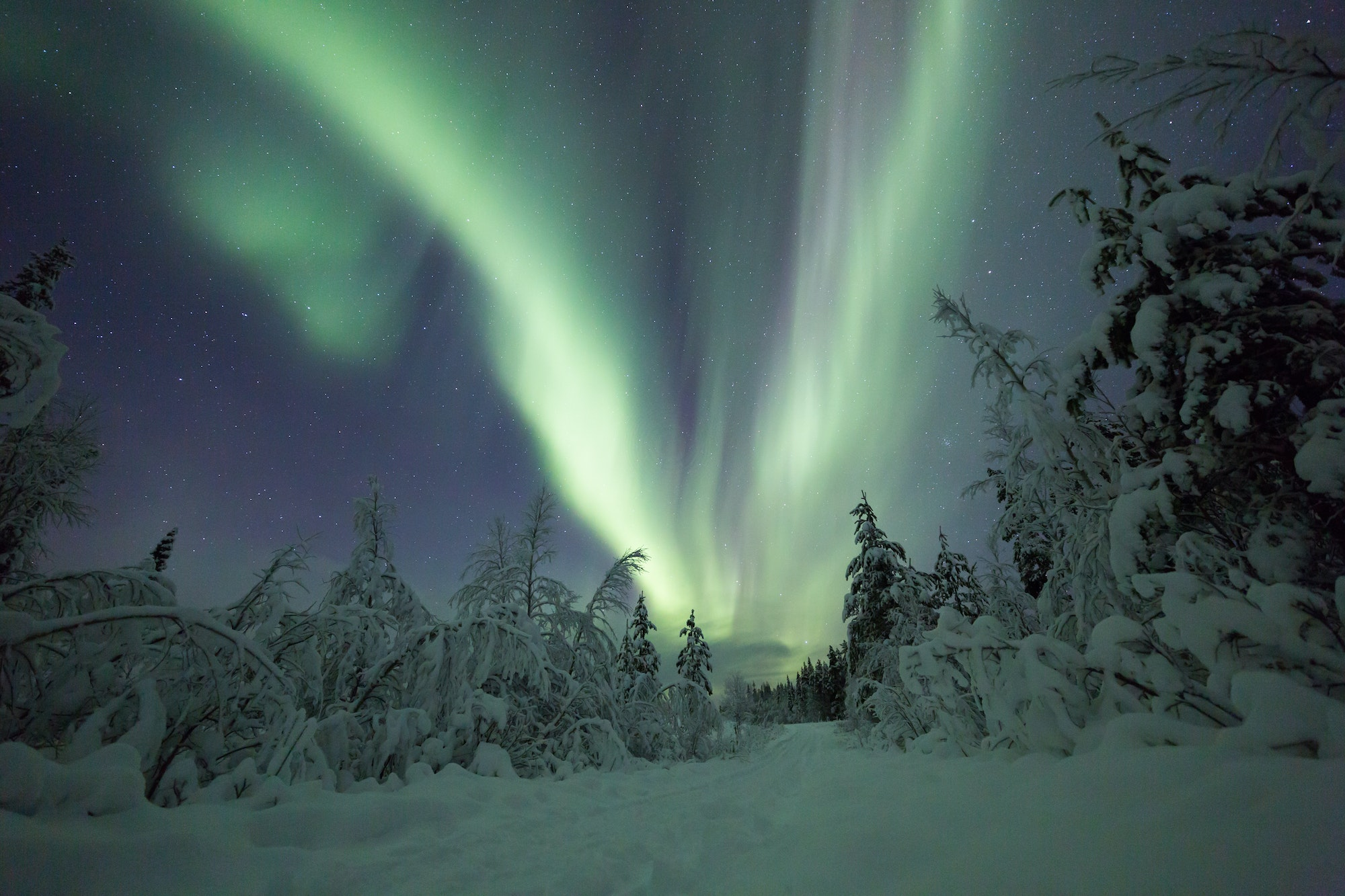 The northern lights are visible on about 200 nights a year in Finnish Lapland.