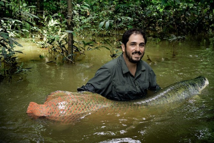 João Campos-Silva, a Brazil-based biologist and conservationist, holding the world's largest freshwater fish in the Amazonian rain forest.