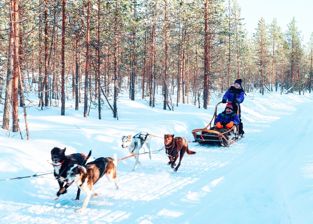 Dogsledding is a mode of transport for locals, but you can try it in Lapland with tour operators.