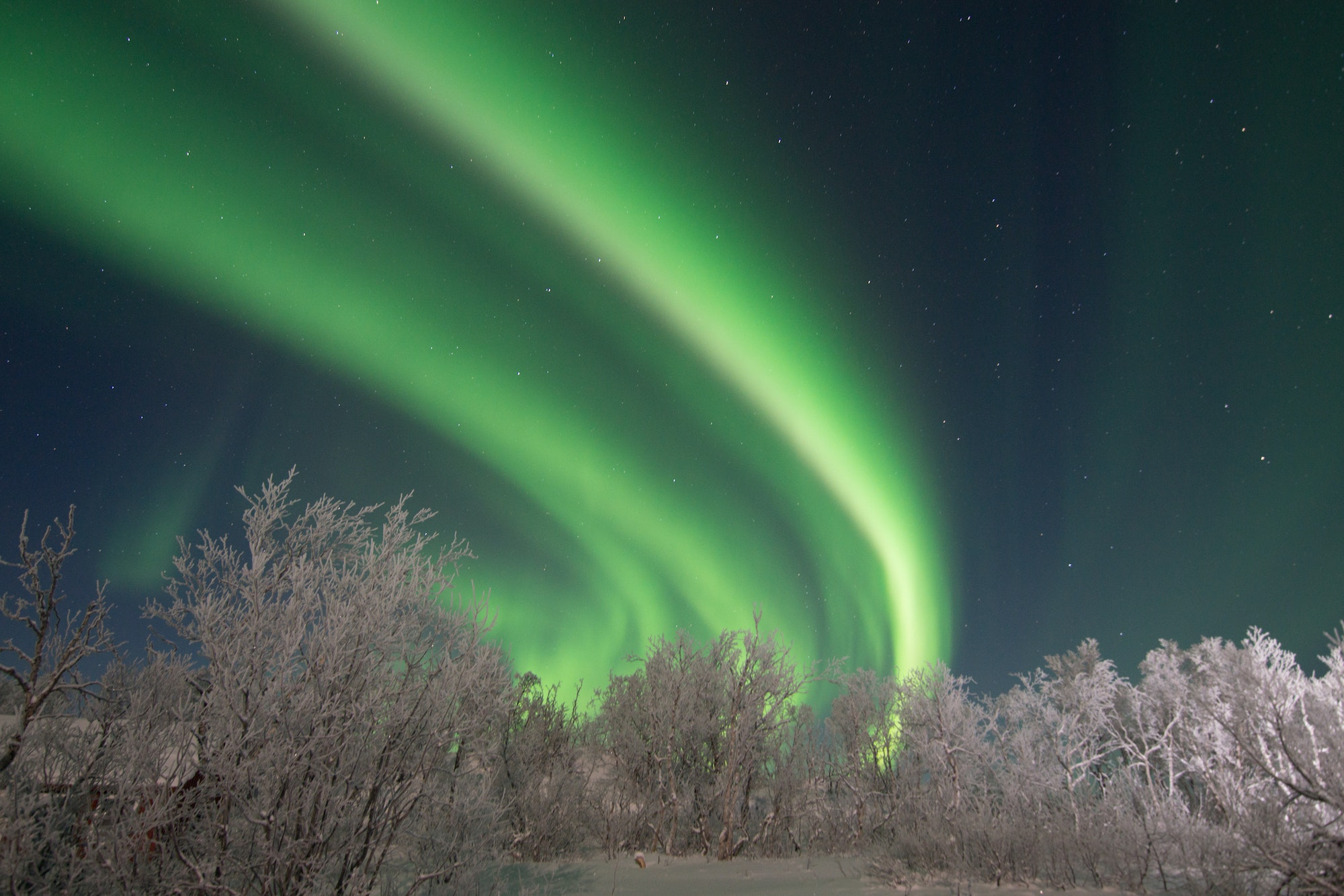 Northern lights sightings are most likely during the hours around midnight.