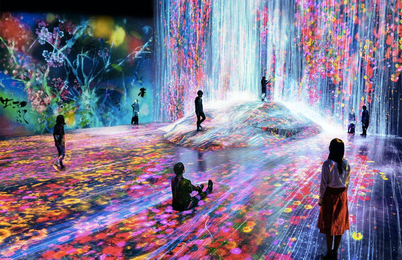 """""""Universe of Water Particles on a Rock Where People Gather"""" teamLab, 2018."""